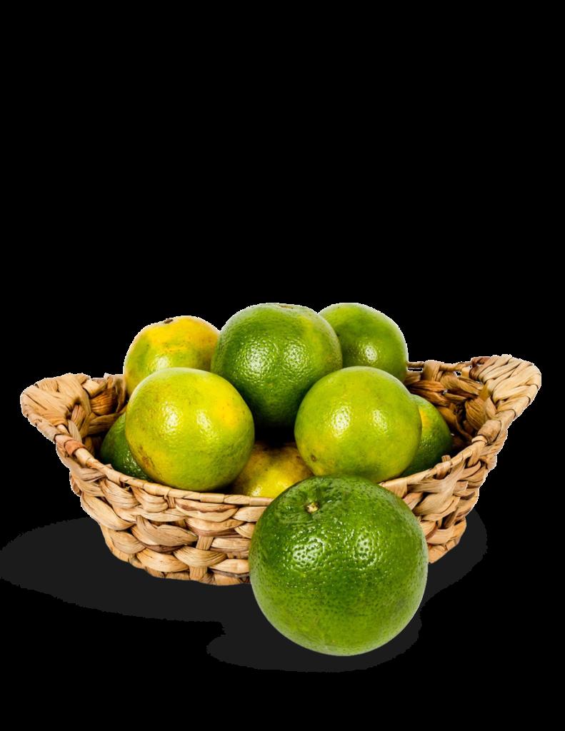 Red de naranjas